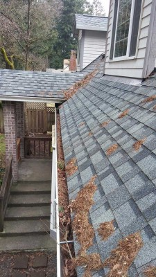 Dirty Gutters and roof