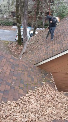 Man on the roof with blower cleaning leaves